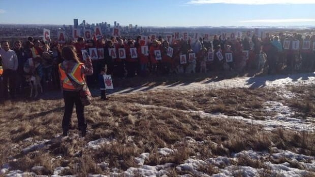 Hundreds turned out for a rally in Calgary's Nose Hill Park Saturday to call for tougher animal cruelty laws.