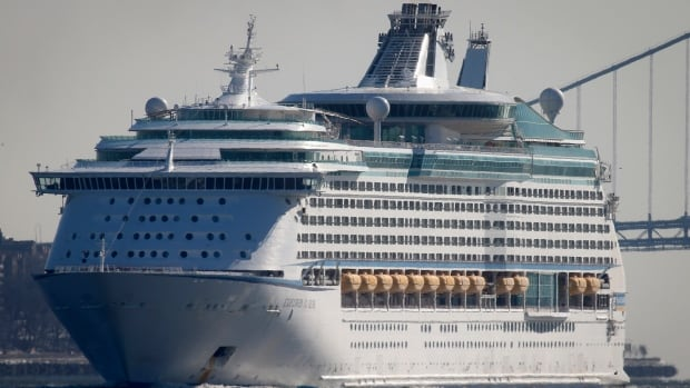 The Royal Caribbean's cruise ship Explorer of the Seas arrives back at Bayonne, N.J., on Jan. 29, 2014. The Explorer of the Seas cut short its Caribbean cruise following an outbreak of gastrointestinal illness, according to the U.S. Centers for Disease Control and Prevention.