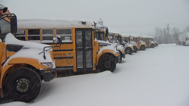 Bus Cancellations: School, Bus Cancellations Once Again For Parts Of Nova