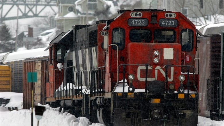 Farmers say CN strike cost them their reputations — and they want a permanent fix
