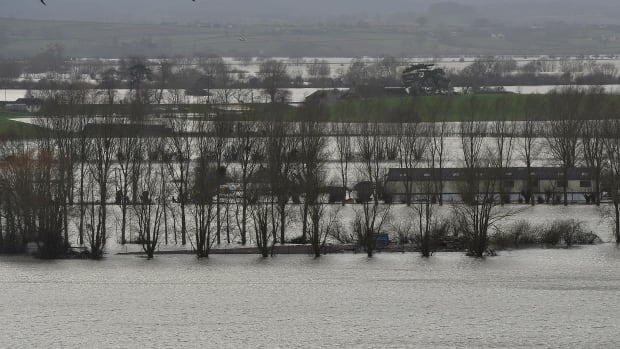 Birds fly over flooded land near Burrowbridge on the Somerset Levels in south west England February 4, 2014.