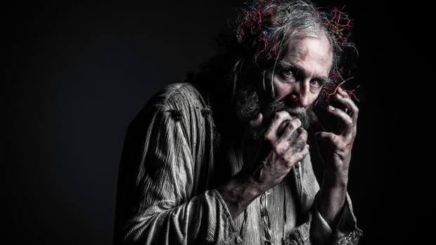 Colm Feore plays King Lear in a recent performance at the Stratford Festival. Hamilton's municipal election candidates will take the stage in July to act out Shakespearean roles as a fundraiser for the Hamilton Fringe Festival.