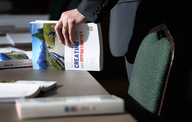 2014 Federal Budget 20140211
