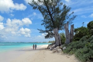 Cayman Islands Haven No More