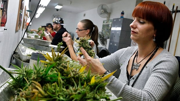 Colorado state and county coffers are flush with revenue from marijuana sales taxes but there's uncertainty about its long-term potential to help cities with their cash woes.
