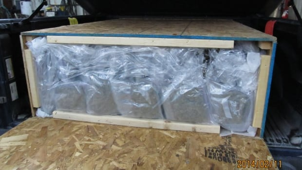 Police seized a large amount of marijuana on Wednesday, that was being trucked from Nova Scotia. A man from C.B.S. was arrested and charged with trafficking.
