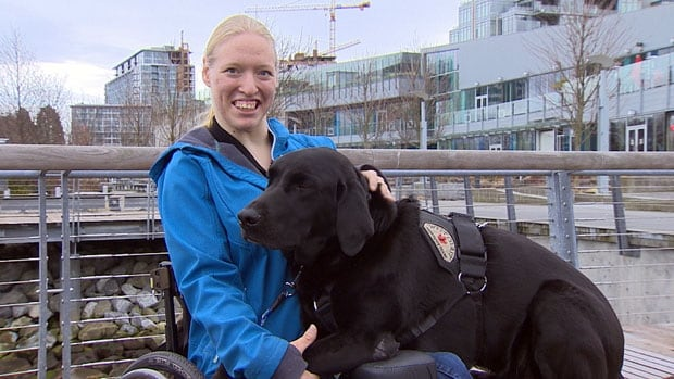 Tessa Schmidt recently started a dog training business, and is worried how she will keep it going while she waits for funding to replace her broken power wheelchair.