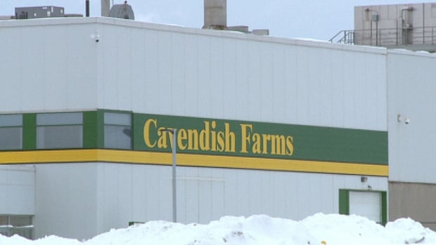 The layoffs at Cavendish Farms Thursday bring the total announced in the last four months to 83.