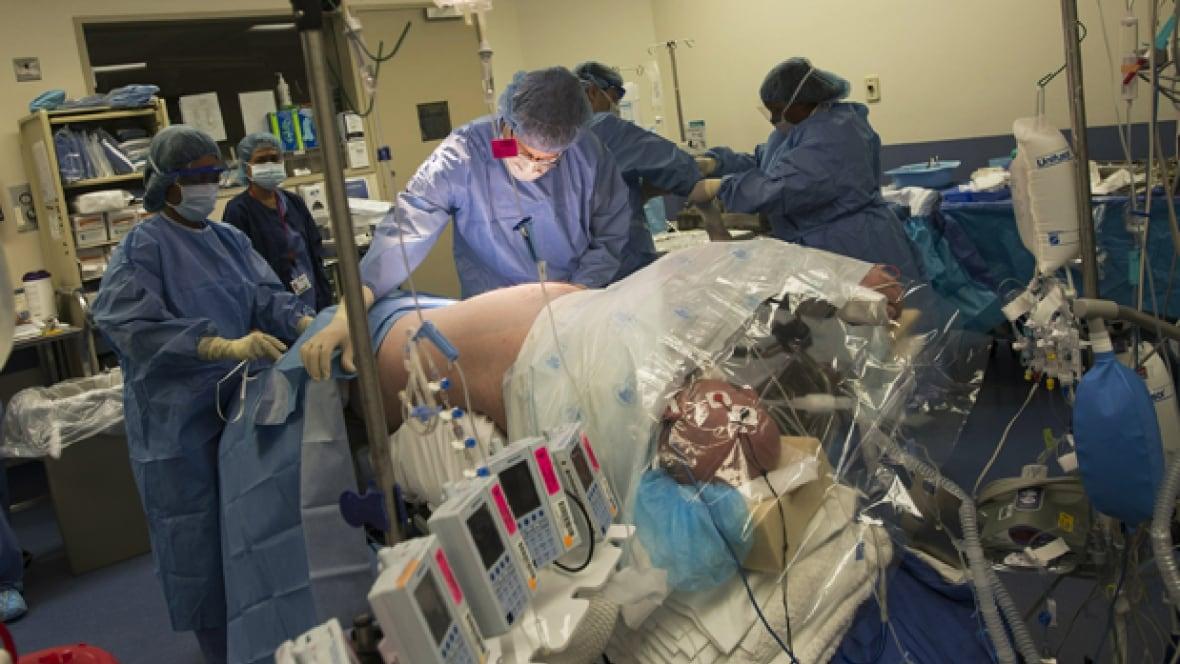 Excellent interlocutors organ donor canada homosexuals news regret