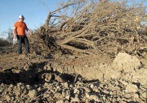 California Drought Farmers