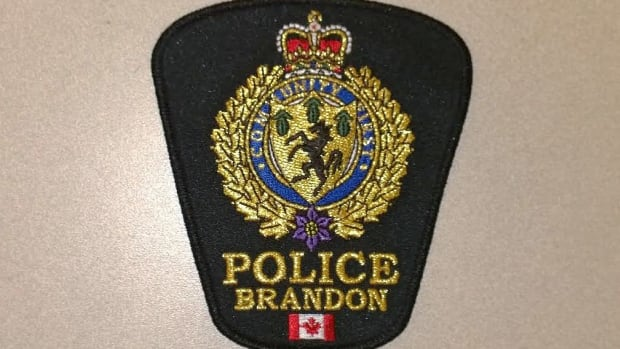 A police officer attending to a complaint in central Brandon was struck in the chin during an arrest.