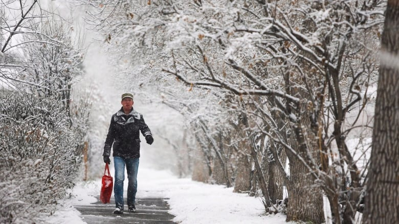 White Christmas In Canada.Will Calgary See A White Christmas Cbc News