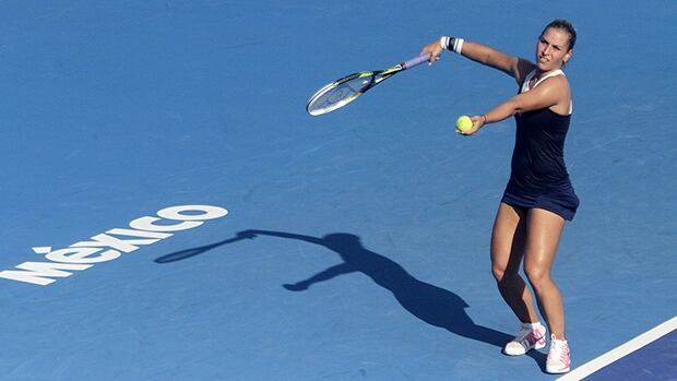 Dominika Cibulkova claimed the 2014 Mexican Open title with a 7-6 (3), 4-6, 6-4 victory over Christina McHale.