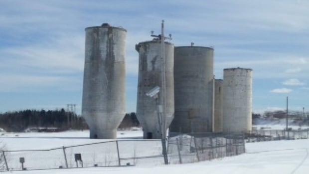 A Montreal man who grew up in New Brunswick has plans to paint the large silos at the defunct paper mill site in Bathurst.