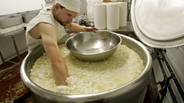Cheese maker David Boag, of Great Barrington, Mass., front, plunges his arms into a cauldron of curds. The EU wants to restrict the use of iconic cheese brands as part of free trade discussions.