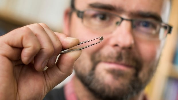 University of Alberta geochemist Graham Pearson holds a diamond used in a previous study that found oceans' worth of water deep inside the Earth. He was a co-author of the new study that provides more evidence of how water is recycled deep within the Earth.