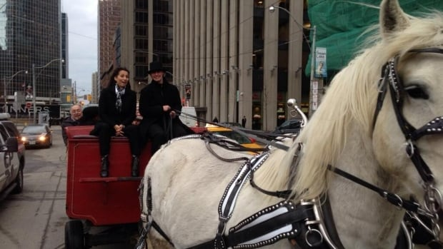 Sarah Thomson arrives by horse and buggy at city hall, where she officially filled out her papers to become a candidate in the 2014 mayoral race.