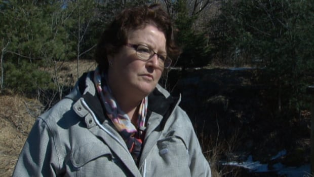 Suzanne Roy, vice-chair of the Shubenacadie Canal Commission, is asking the public to submit testimonials about using the portage land between Lake Fletcher and Lake Thomas.