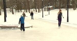 Bannerman Loop skaters
