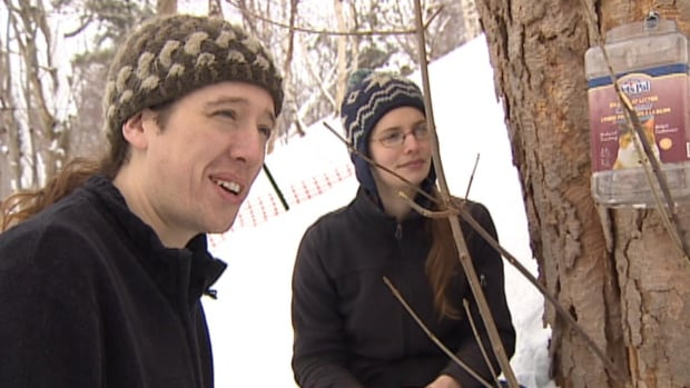Steve and Lisa McBride say the maple sap they get from the trees in their own backyard makes better syrup than anything bought at the grocery store, and comes with the perk of being free.
