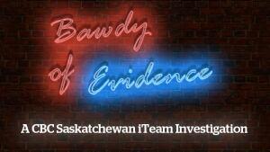 Bawdy of Evidence skpix