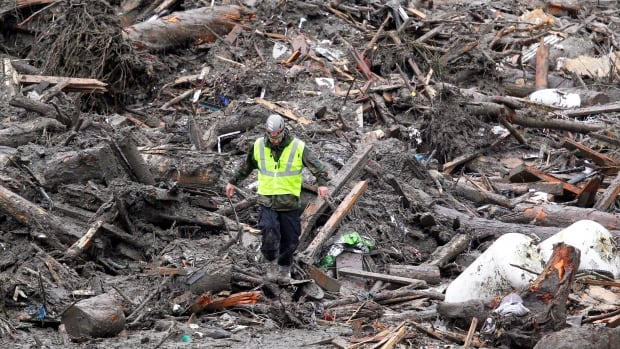 A searcher walks down a huge pile of debris at the scene of a deadly mudslide that destroyed the small Washington town of Oso on March 22, 2013.