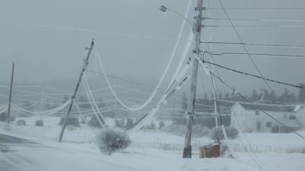 Power lines were weighed down by ice near Main-a-Dieu in Cape Breton.