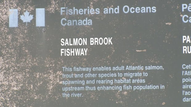 This DFO fishway monitoring station at Salmon Brook will not reopen for summer 2014. The department will save 15-thousand dollars cutting the program.