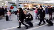 Pearson Travel 20131220