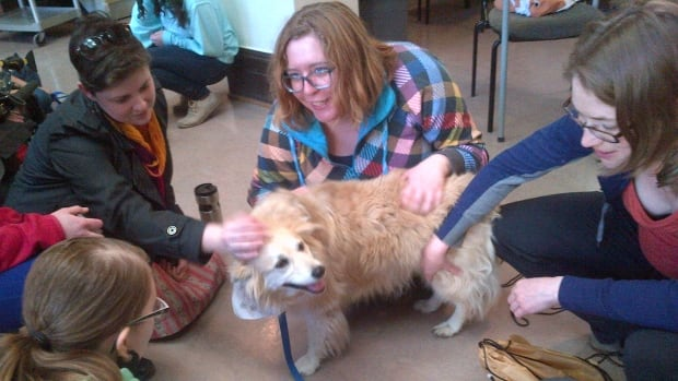 A therapy dog from St. John Ambulance visited with University of Saskatchewan students to help reduce their stress during final exams.