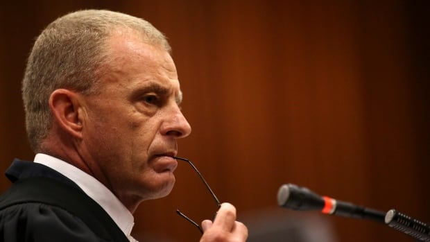 Chief prosecutor Gerrie Nel has become a type of legal celebrity for his work on the Oscar Pistorius murder trial. Known in some circles as 'pitbull,' Nel has constantly called into question Pistorius's character, even laughing at some responses from the embattled Olympian during cross-examination.
