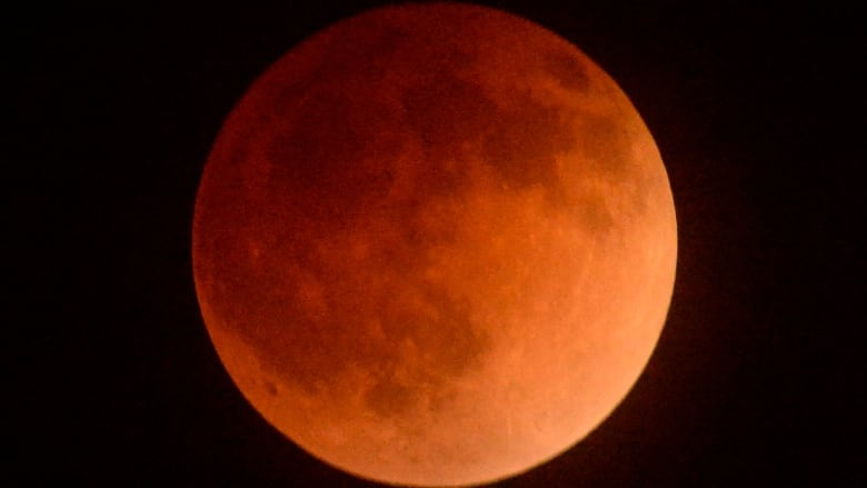 blood moon eclipse los angeles time - photo #16
