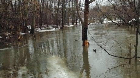 Rainy forecast prompts flood watch advisory in North Bay