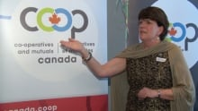 Co-operatives and mutuals Canada Denise Guy