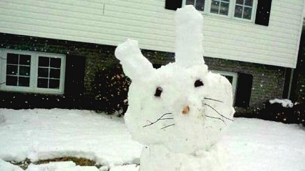 The Easter bunny may be bringing more than chocolate to southern Alberta this weekend, with 10 centimetres of snow expected in areas of the Foothills