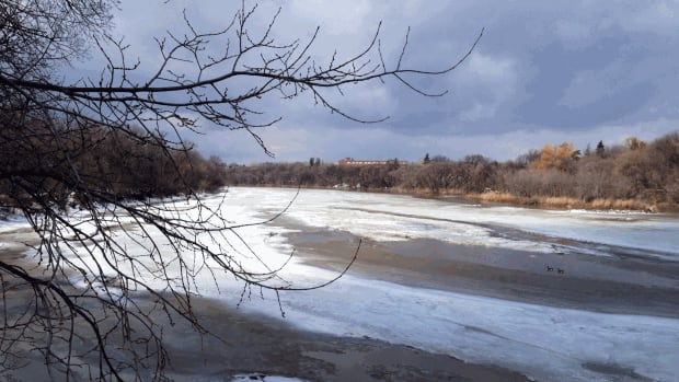 Melting is well underway on the Assiniboine River Saturday.