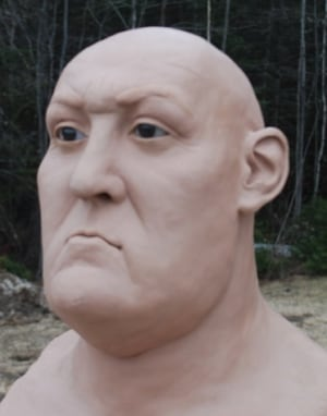 John Doe bust