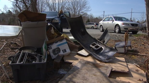 Speakers, a weed whacker, pans and car seats were among the items found along the Frog Pond Trail off Purcells Cove Road.