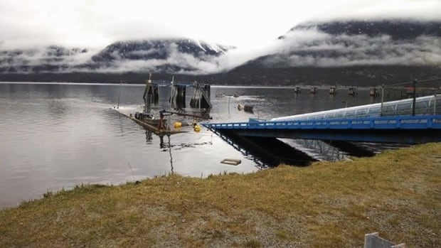The Skagway dock is normally used to load passengers and vehicles onto Alaska Marine Highway System ferries. On Thursday morning, people in the community woke up to find it underwater.