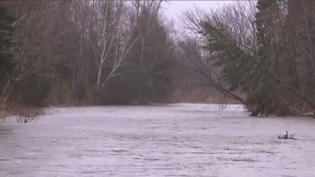 Recent rain has caused many New Brunswick rivers to reach flood stage again.