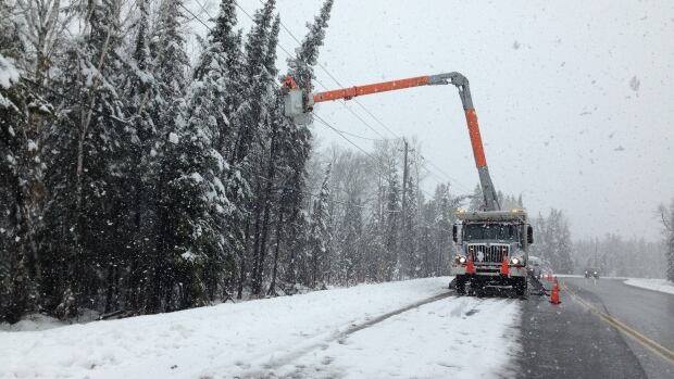 Trees falling onto power lines, broken-off branches, and damaged equipment are all factors in the outages.