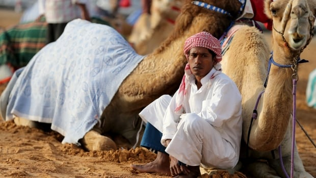 Scientists have more definitive evidence implicating camels in the ongoing outbreak of MERS.