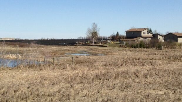 Windy and dry conditions are causing grass fire concerns. As fire fighters tackled a grass fire Tuesday near Delacour, officials in Cochrane imposed a fire ban.