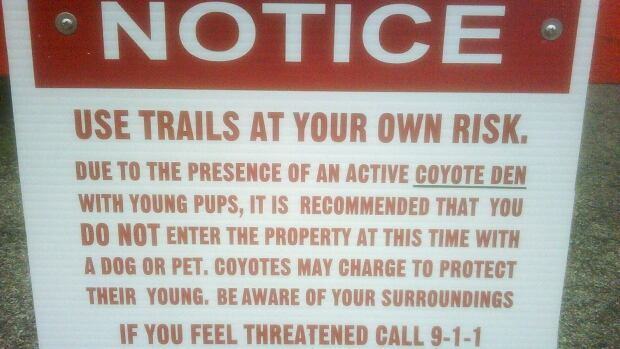 Crews have set up barricades at Paletta Lakefront Park in Burlington warning of a family of coyotes that has been spotted on the trails.
