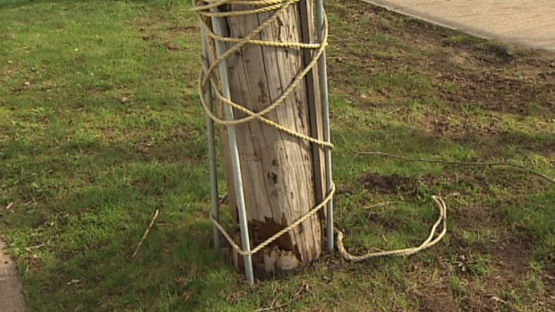 Concerns are being raised over a rotting utility pole on South Park Street that is being held in place by a few steel rods and some rope secured to a nearby tree.
