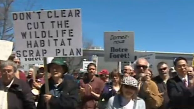 Hundreds protested the province's new Crown forestry deal with J.D. Irving.