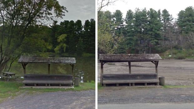 Pine lake before and after pic