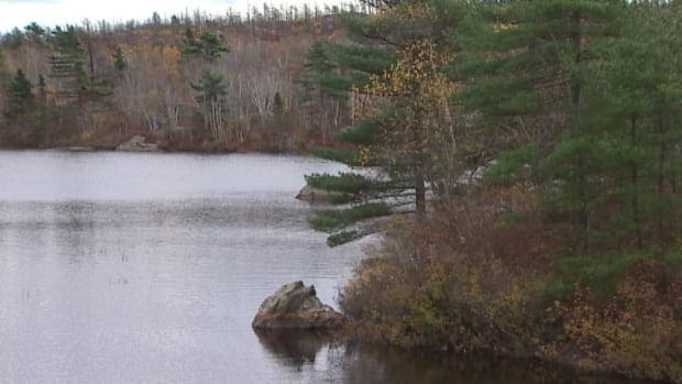 Halifax regional council has turned down a proposal for limited development in the backlands.