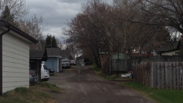 Some residents are hoping that Thunder Bay city council seriously considers a proposal to restore maintenance of laneways in the city's residential areas.
