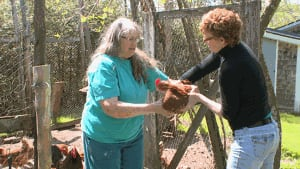 Judy Whalen shows Nancy Fox how to hold chickens